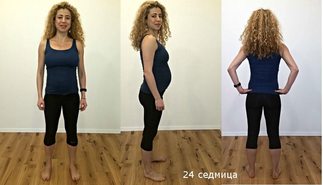бременност 24 седмица
